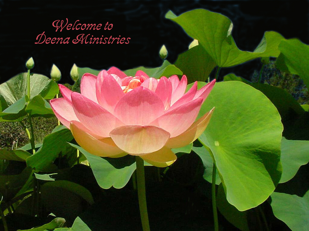 Welcome to Deena Ministries